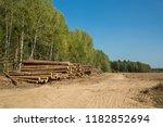 the felled trees folded near... | Shutterstock . vector #1182852694