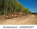 the felled trees folded near... | Shutterstock . vector #1182852697