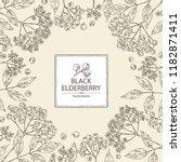 background with elderberry... | Shutterstock .eps vector #1182871411