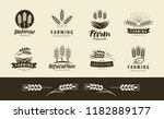 agriculture  wheat logo or... | Shutterstock .eps vector #1182889177