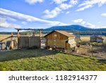 small chicken coop in the back... | Shutterstock . vector #1182914377
