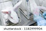 researcher injects novel... | Shutterstock . vector #1182999904
