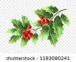 christmas holly tree branch...   Shutterstock .eps vector #1183080241