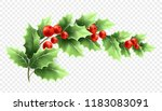 christmas holly branch... | Shutterstock .eps vector #1183083091