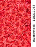 Stock photo red natural roses abstract background 118311055
