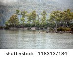 views of lake st clair and... | Shutterstock . vector #1183137184