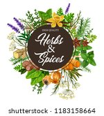 Herb And Spice Frame With Spicy ...