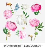 a picturesque peony flower....   Shutterstock .eps vector #1183200607