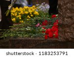 a lot of fresh flowers on the... | Shutterstock . vector #1183253791