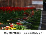 a lot of fresh flowers on the... | Shutterstock . vector #1183253797