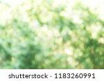 green bokeh background | Shutterstock . vector #1183260991