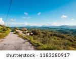 corfu   kerkyra   island ...   Shutterstock . vector #1183280917