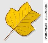 tulip poplar autumn leaf... | Shutterstock .eps vector #1183288081
