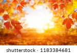 autumn background with maple... | Shutterstock . vector #1183384681