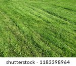 green lawn after cutting the... | Shutterstock . vector #1183398964