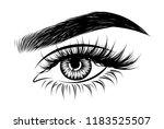 abstract fashion illustration...   Shutterstock .eps vector #1183525507