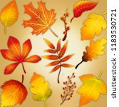 miscellaneous different autumn... | Shutterstock . vector #1183530721