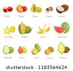 lychee and mango fruits set... | Shutterstock .eps vector #1183564624
