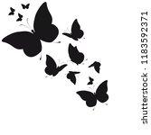 silhouette beautiful...   Shutterstock .eps vector #1183592371