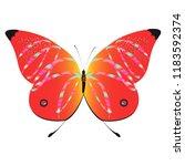 beautiful red butterflies ...   Shutterstock .eps vector #1183592374