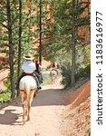 Horseback Riding At Bryce...