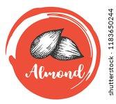 aldmont nuts vintage hand... | Shutterstock .eps vector #1183650244