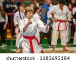 guy karate does kata at the... | Shutterstock . vector #1183692184