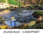 autumn river nature   Shutterstock . vector #1183699687