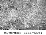 abstract background. monochrome ... | Shutterstock . vector #1183743061