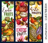 exotic tropical fruits sketch... | Shutterstock .eps vector #1183788304
