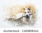 Watercolor Dog Hold Dry Branch...