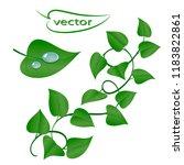 vector illustration of a branch ...   Shutterstock .eps vector #1183822861