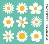 Camomile Set. White Daisy...