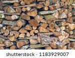 wood wood texture | Shutterstock . vector #1183929007