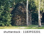 composed wood in the forest | Shutterstock . vector #1183933201