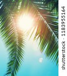 coconut tree on the sky... | Shutterstock . vector #1183955164