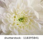 Bridal Bouquet From White And...