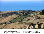 panoramic view of olive groves... | Shutterstock . vector #1183986367