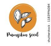pumpkin seed vintage hand... | Shutterstock .eps vector #1183996084