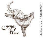 elephant does gymnastics stands ... | Shutterstock .eps vector #1184006581