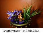 artificial plant and flower... | Shutterstock . vector #1184067361