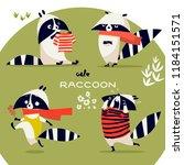 cartoon raccoon collection | Shutterstock .eps vector #1184151571