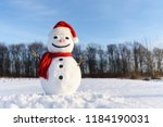 Funny Snowman In Santa Hat And...