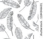 vector vintage botanical... | Shutterstock .eps vector #1184346631