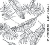 vector vintage botanical...   Shutterstock .eps vector #1184346637
