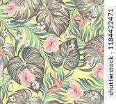 tropical vector seamless... | Shutterstock .eps vector #1184422471