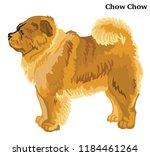 portrait of standing in profile ... | Shutterstock .eps vector #1184461264
