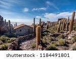 salar de uyuni  bolivia  march...   Shutterstock . vector #1184491801