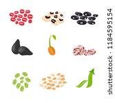 set of beans vector... | Shutterstock .eps vector #1184595154