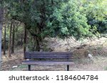 the bench is standing in the... | Shutterstock . vector #1184604784